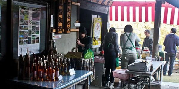 Misato Festival