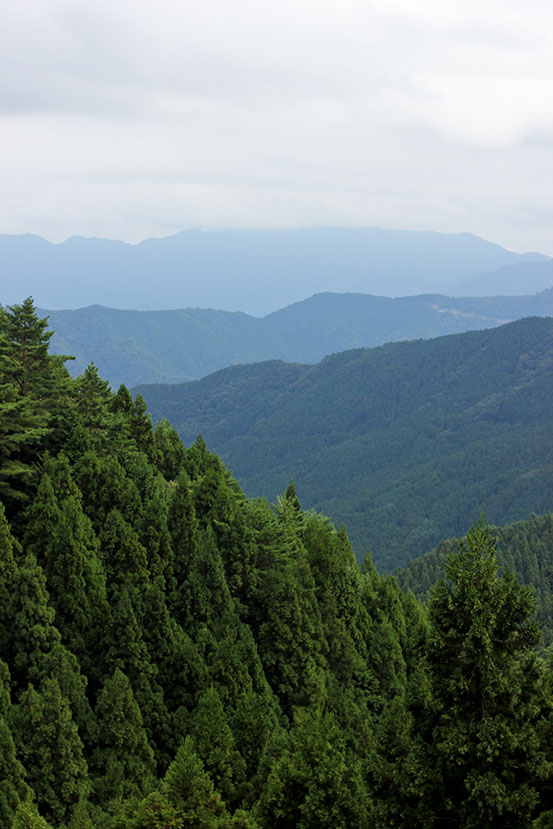 on-Mt-Kotsu